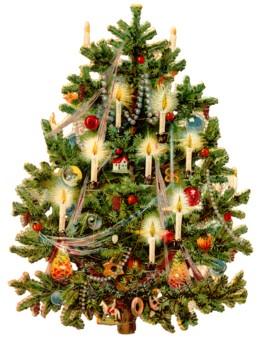 012_Christmas_tree.jpg